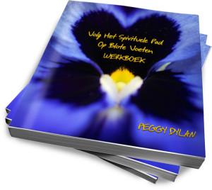 werkboek volg het spirituele pad op blote voeten e-book peggy dylan